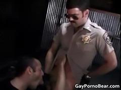 Gratis homo bears suck and fuck stiff part1