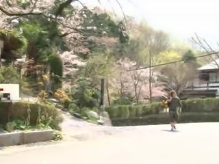 Japanese traditional hostel