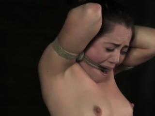 Restrained tt sub gets tits caned