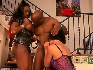Jada Fire and Roxanne Hall are a couple of hot cougars. They are with a black...