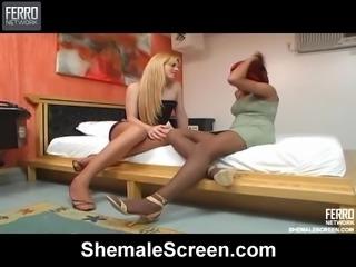 Blonde Tranny Banging a Redhead Chick