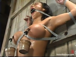 Secured on that wooden wall, ball gagged and with small buckets strapped on...