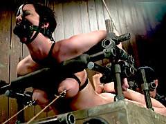 Hogtied cum slave whipped and tit torturing