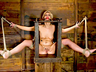 Hogtied slave Tara Boxed up and carted around