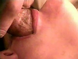 Swallow close up