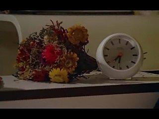 Les Plaisirs solitaires (1976)