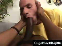 Interracial Gays Loving monster cock